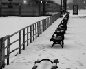 20081219-coney-benches-1