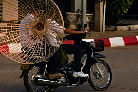 Basket or bird cage on a bike, Savannakhet, Laos. Seth Rosenblatt (c) 2006.